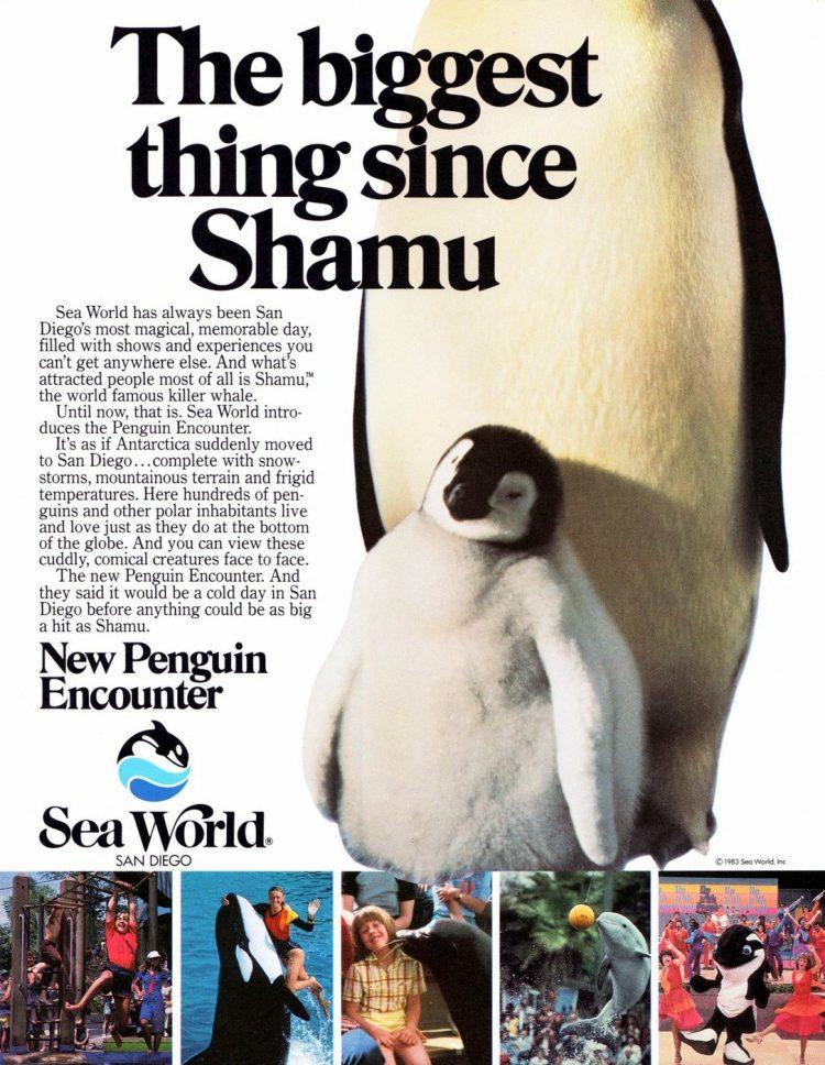 Sea World San Diego 1984