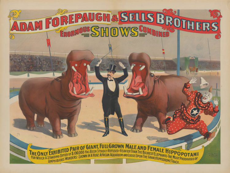 Sells Brothers Circus - Giant Hippos (1896)