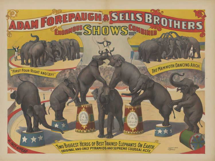 Sells Brothers Circus poster - two herds of trained elephants (1896)