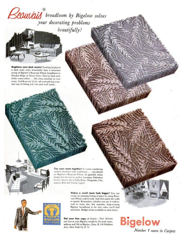 Sep 13, 1954 retro sculpted carpet