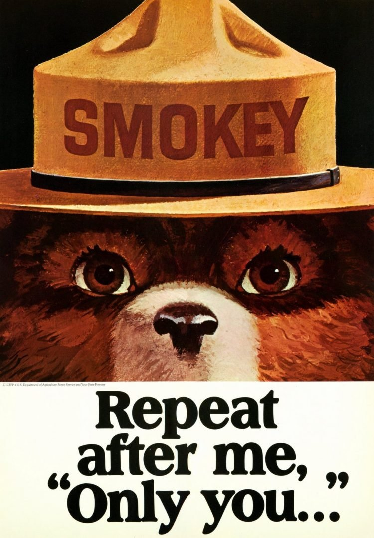 Smokey - Repeat after me - only you