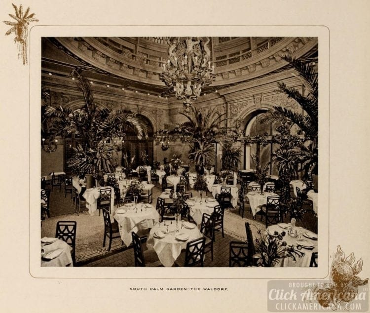 South Palm Garden at the Waldorf Hotel in NYC - 1903