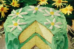 Springtime fancy cake (1953)