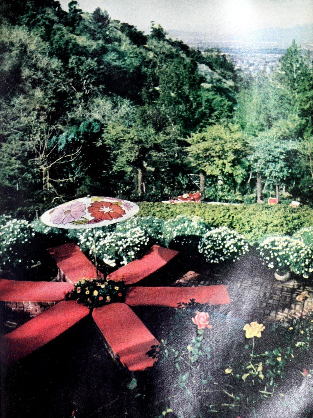 Starburst sun terrace in the '60s backyard (1966)