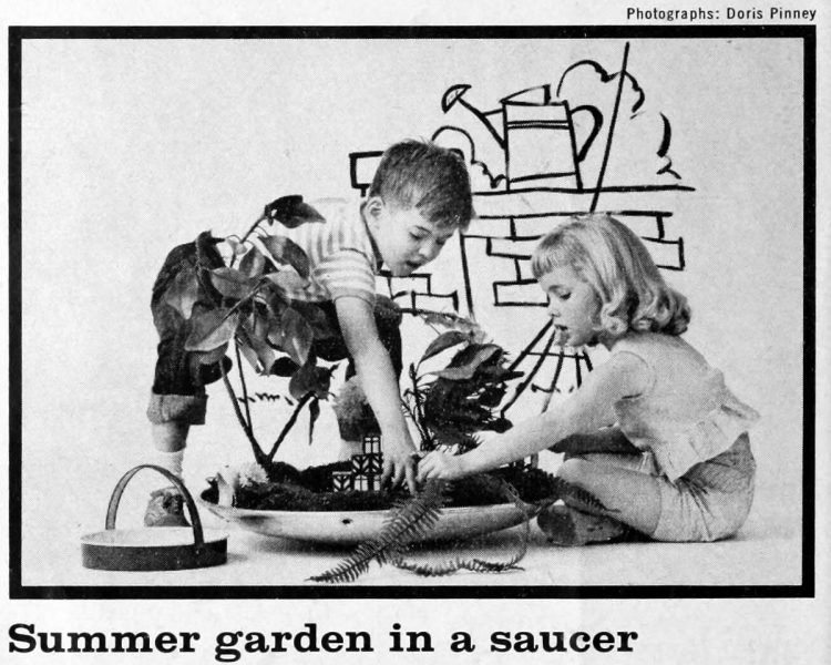Summer garden in a saucer - Fun activities for bored kids - ideas from the 60s