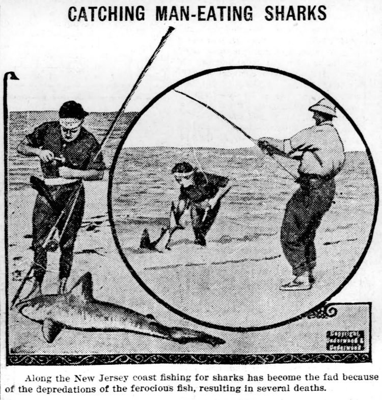 Summer shark attacks in New Jersey - people trying to catch them in 1916