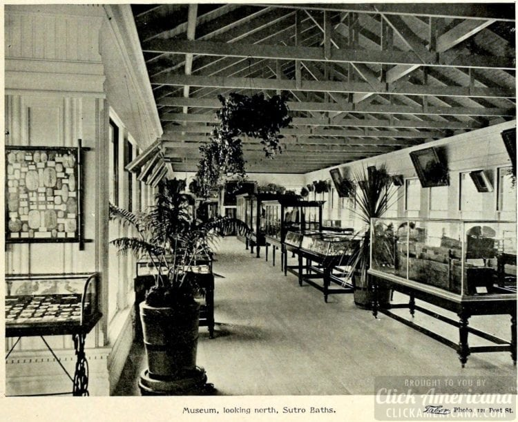 Sutro Baths museum exhibits - 1895