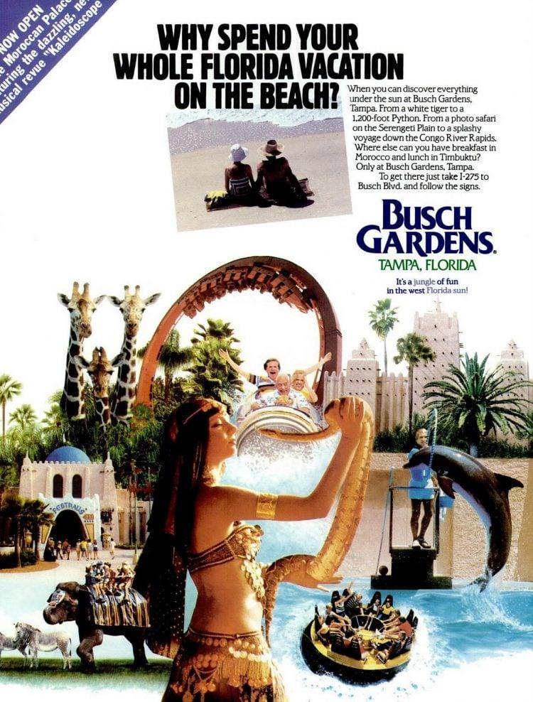 Tampa Bay Magazine Mar-Apr 1987 Busch Gardens