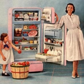 The 1950s housewife (3)