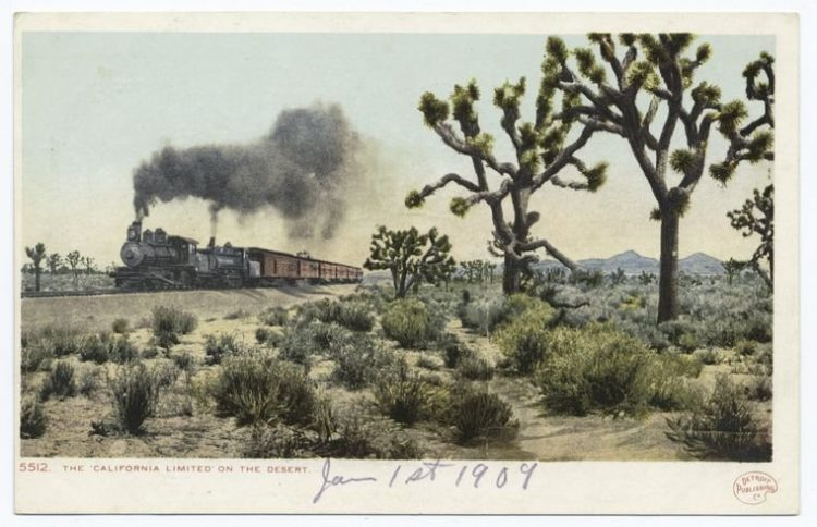 The California Limited on the desert 1909
