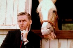The Famous Mister Ed - Talking horse TV show - Alan Young