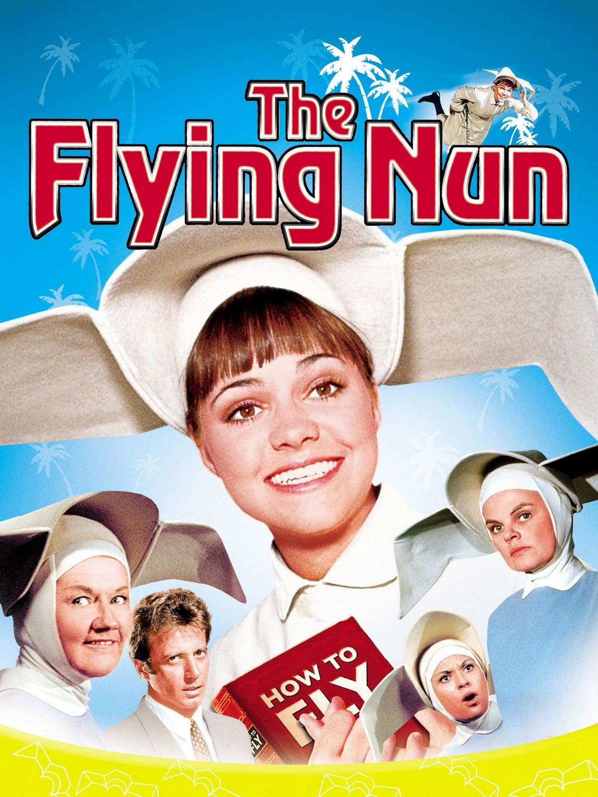 The Flying Nun TV show DVDs