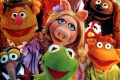 The Muppet Show Muppets