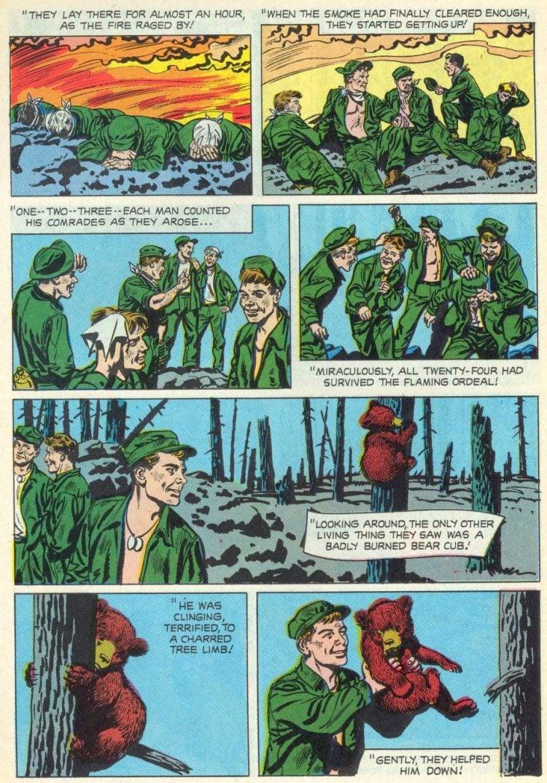 The True Story Of Smokey Bear 1969
