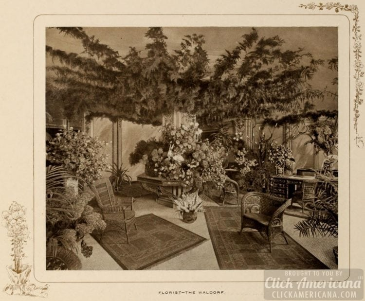 The Waldorf Hotel florist shop in 1903
