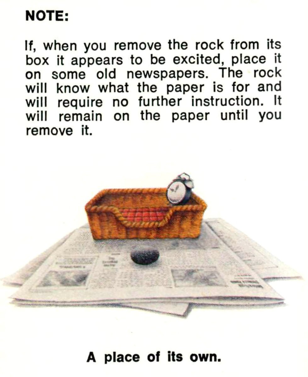The care and training of your PET ROCK - 1970s manual excerpt (2)
