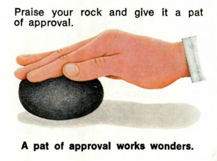 The care and training of your PET ROCK - 1970s manual excerpt (5)