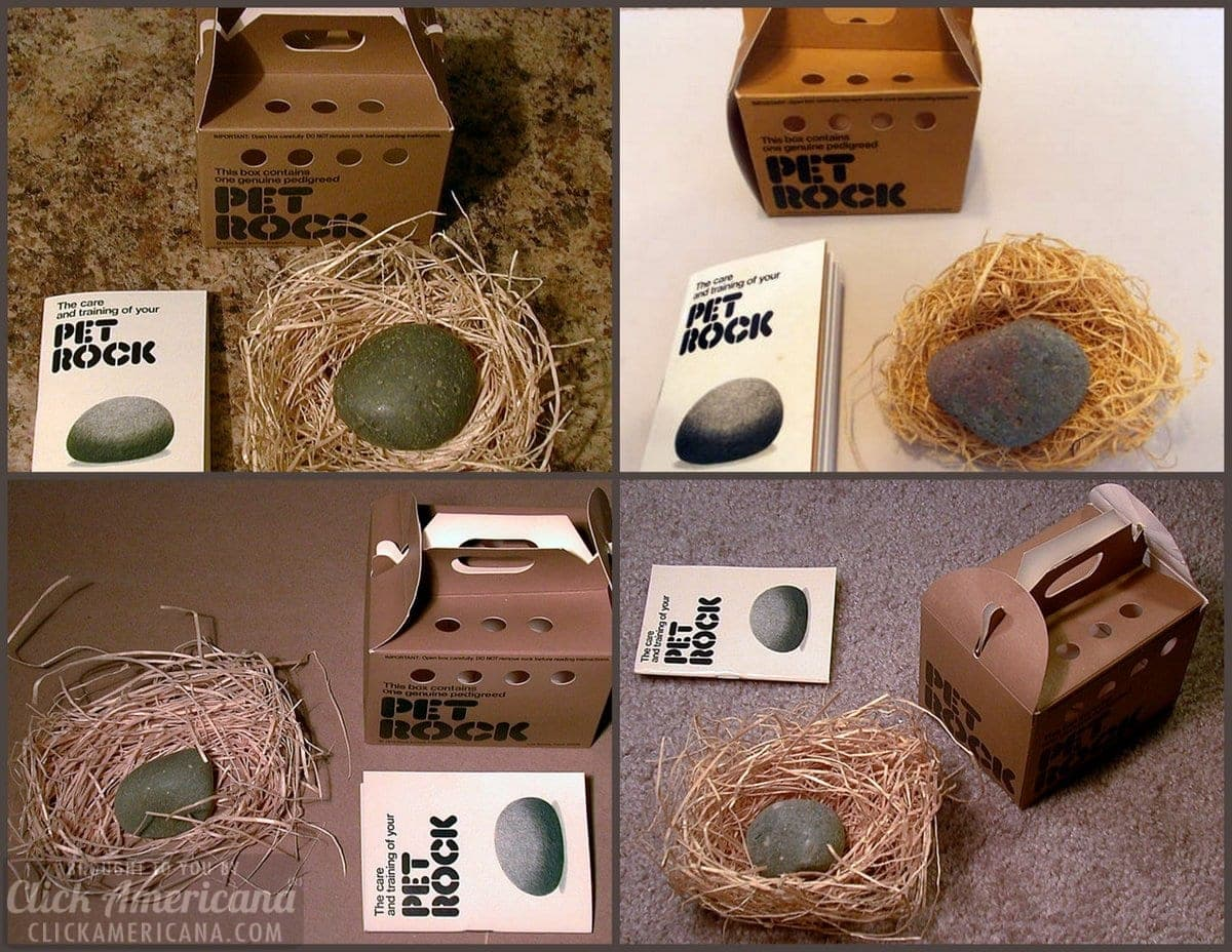 The hottest novelty item of 1975: Pet Rock