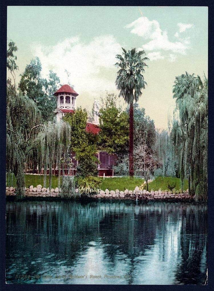 The lake, Lucky Baldwin's ranch, Pasadena, Cal.