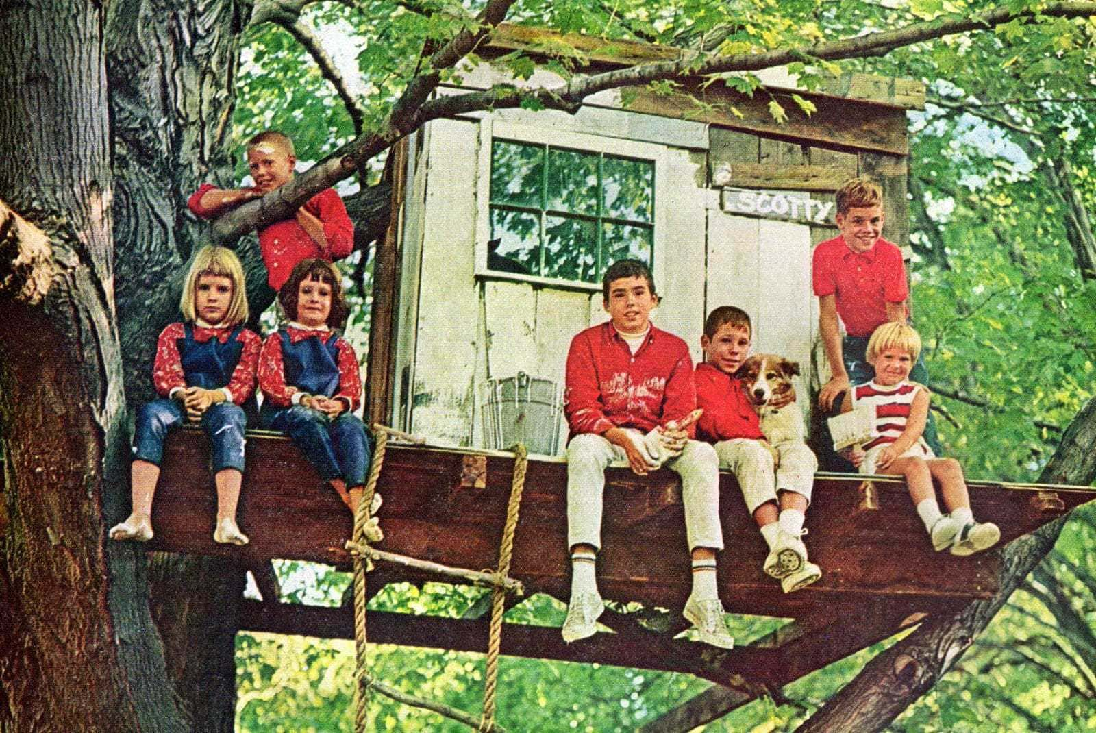 The old-fashioned joys of a tree house