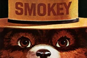 The story of Smokey the Bear