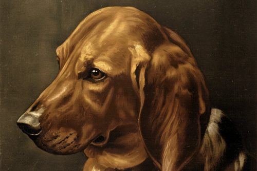Victorian dog portrait and about the vaccine for rabies (1885)