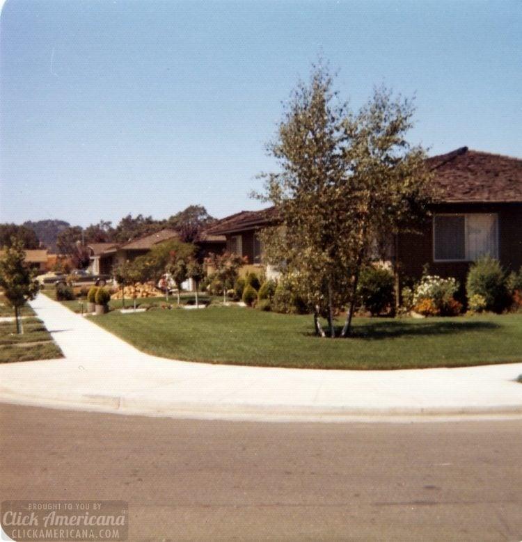 Vintage 1970s house in Santa Rosa California - Front yard - exterior (3)