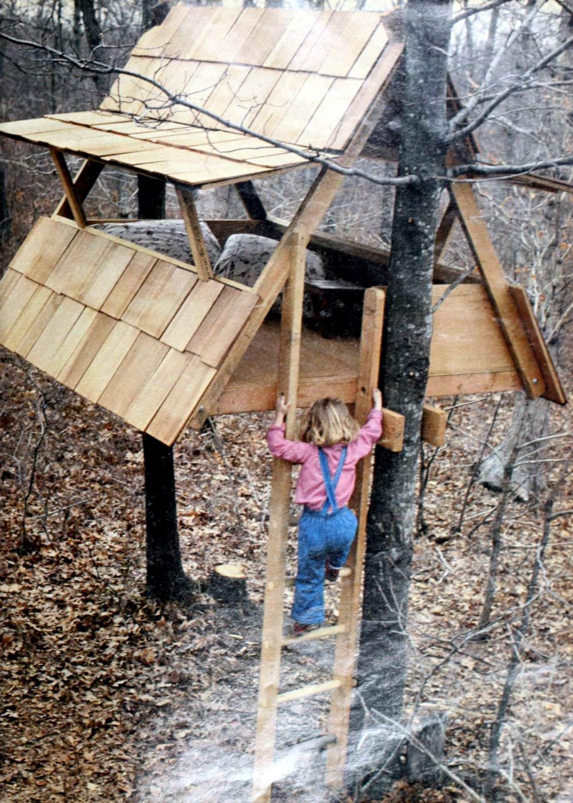 Vintage A-frame tree house (1978)