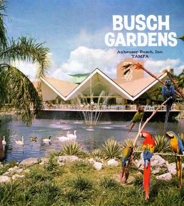 Vintage Busch Gardens - Tampa Florida 1960 (1)