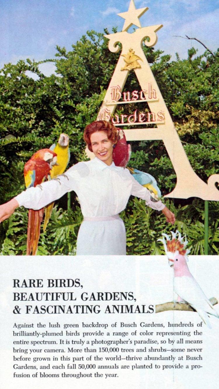 Vintage Busch Gardens - Tampa Florida 1960 (3)
