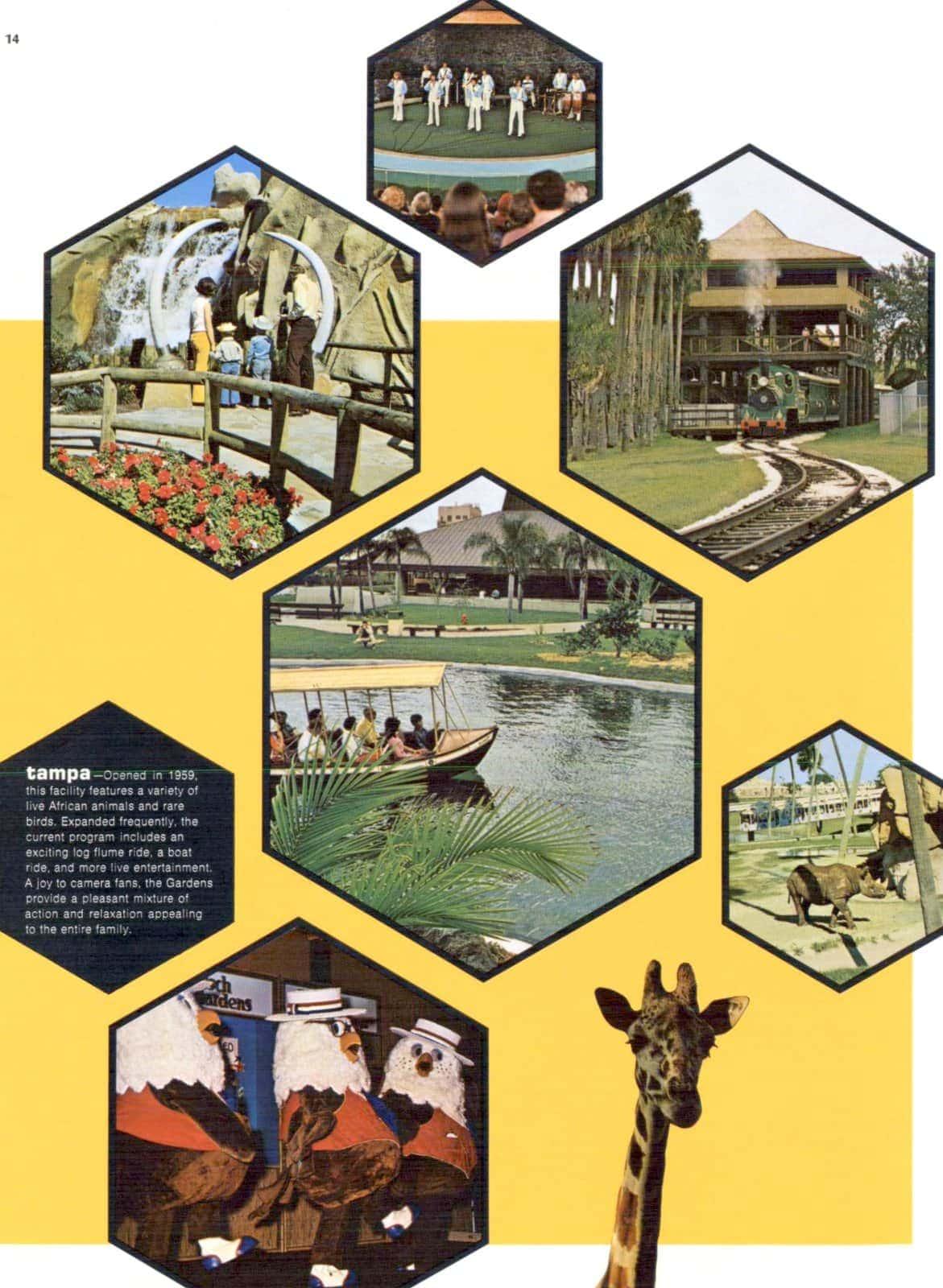 Vintage Busch Gardens in the 1970s (1)