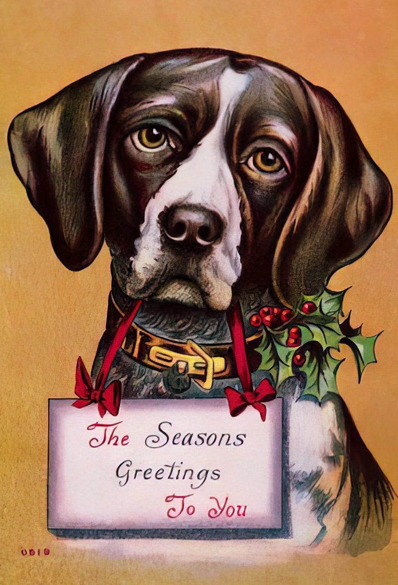 Vintage Christmas postcard with a cute dog