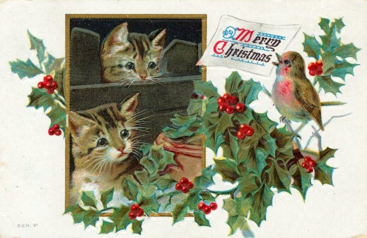 Vintage Christmas postcard with two kittens from 1911