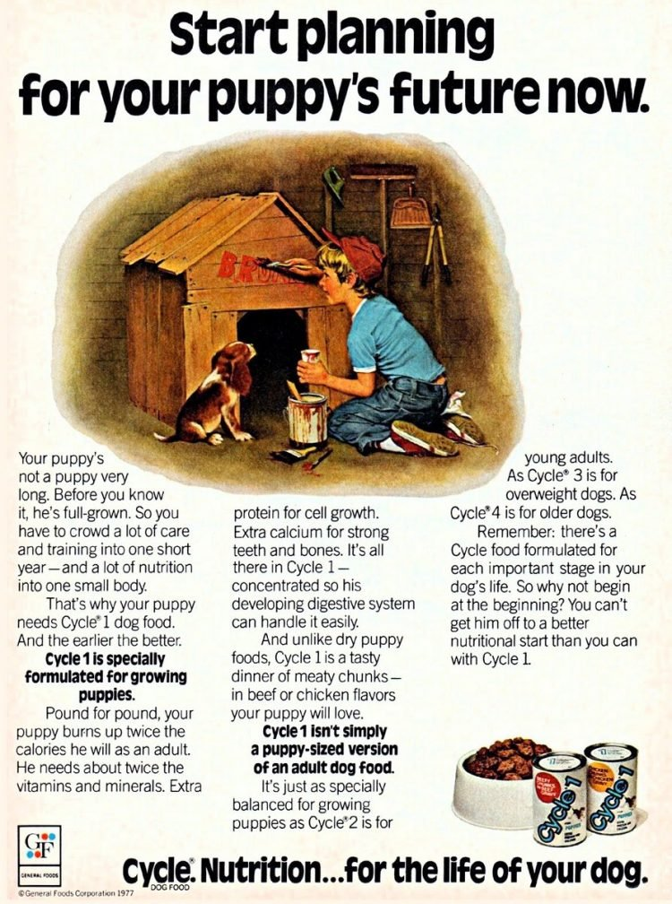Vintage Cycle dog food from 1977 - General Foods