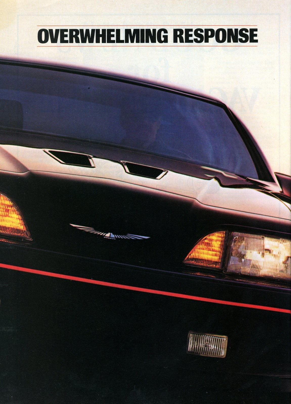 Vintage Ford Thunderbird cars - 1987 (2)