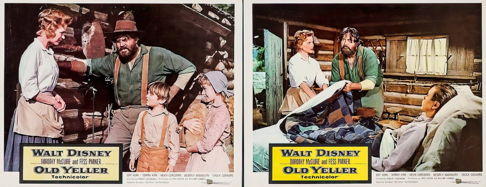 Vintage Old Yeller movie scenes from the 1950s (2)