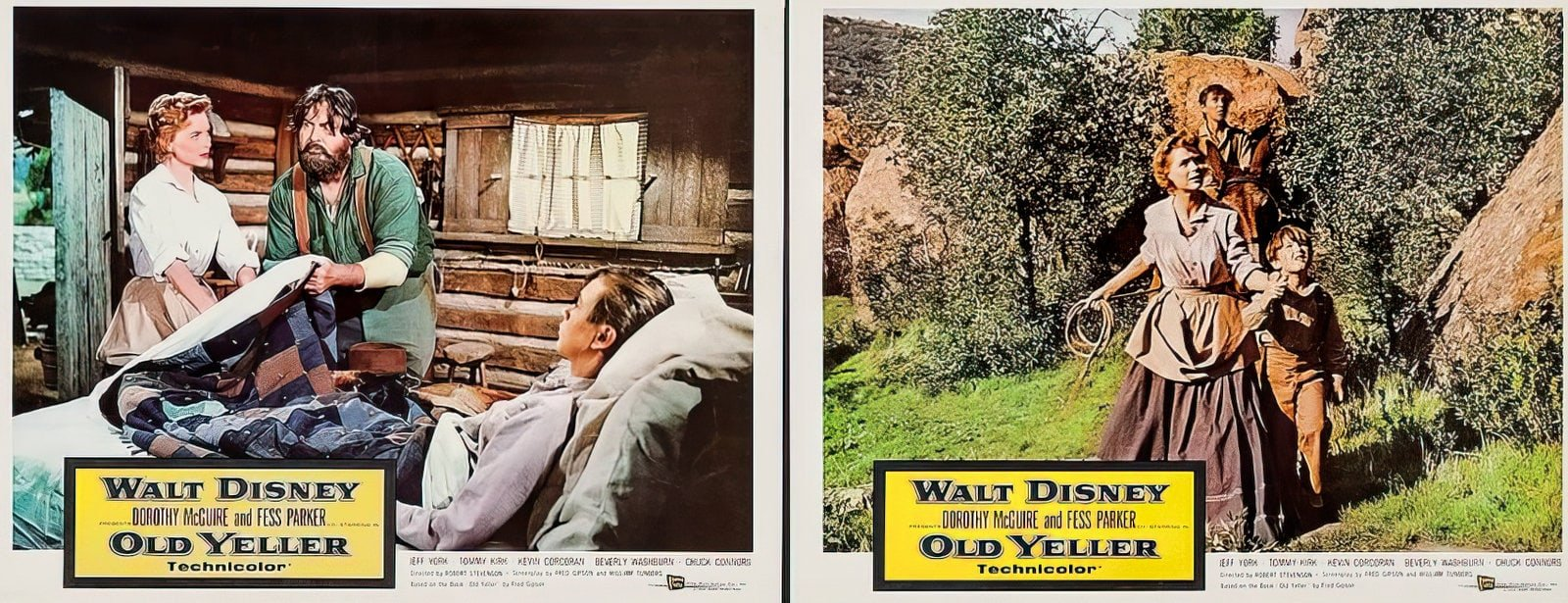 Vintage Old Yeller movie scenes from the 1950s (3)