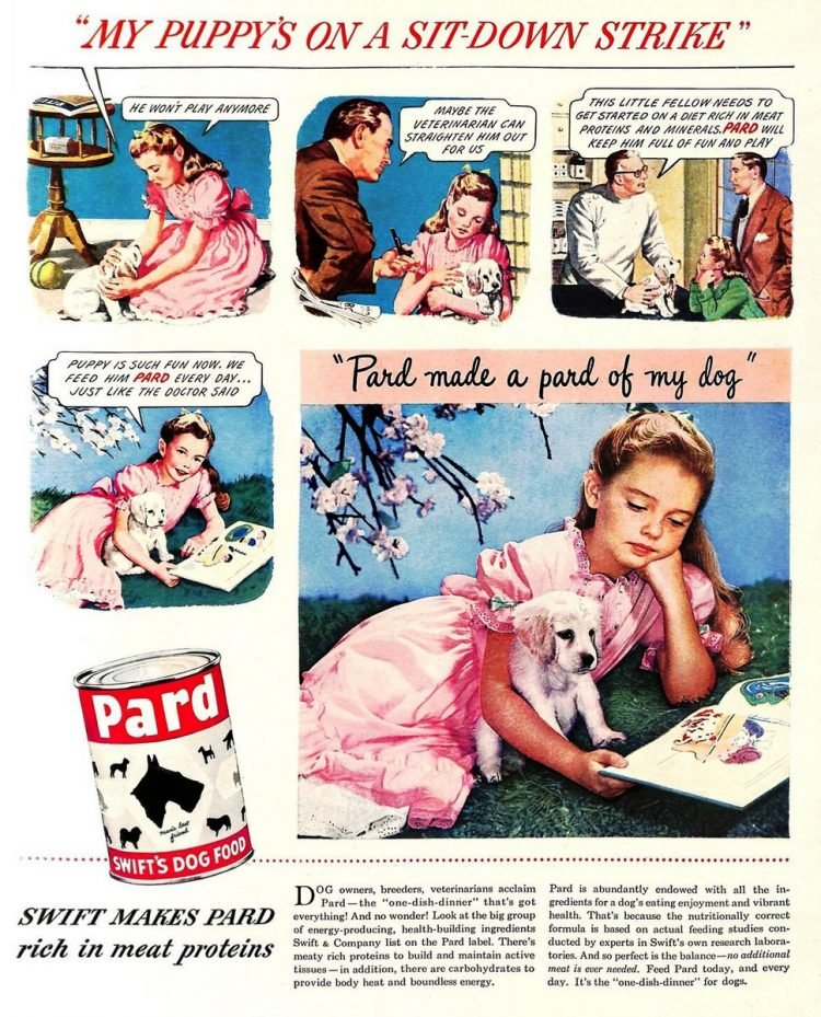 Vintage Pard dog food ad from 1949