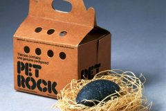 Vintage Pet Rock novelty toy