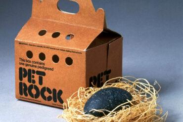 Vintage Pet Rock novelty toy