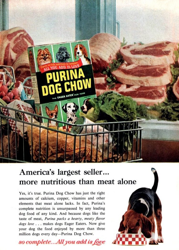 Vintage Purina dog food ad - 1950s 1960s