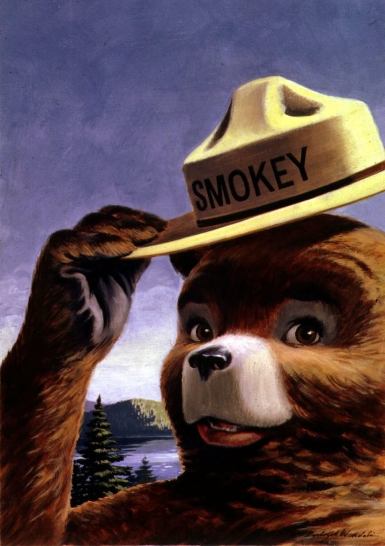 Vintage Smokey the Bear - Prevent forest fires (1)