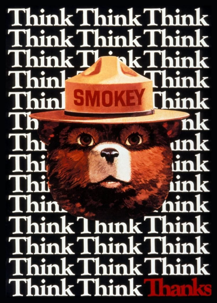 Vintage Smokey the Bear - Think think think thanks