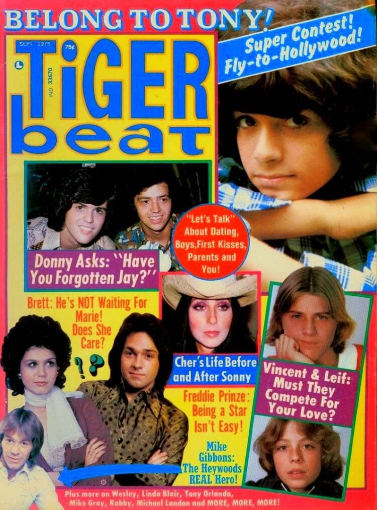 Vintage Tiger Beat teen mag from 1975 with celebrities