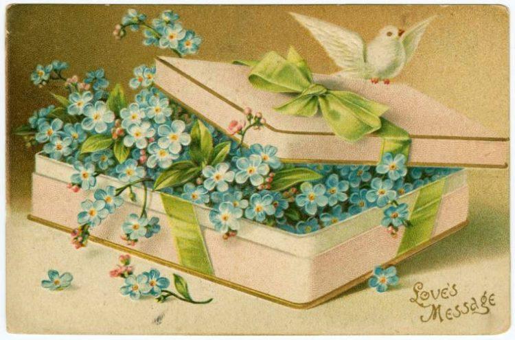 Vintage Valentine's Day cards from around 1900 (6)
