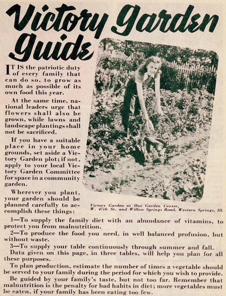 Vintage Victory Garden guide - WWII era - 1940s