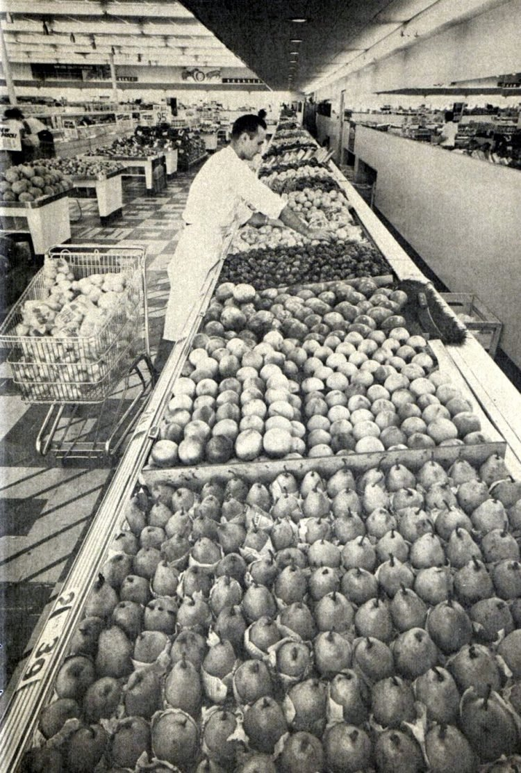 Vintage Winn Dixie supermarkets in the late 1950s (1)