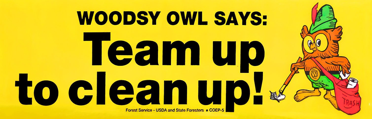 Vintage Woodsy Owl - Team up to clean up bumper sticker