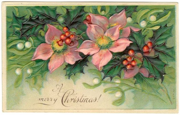 Vintage a Merry Christmas card from 1907