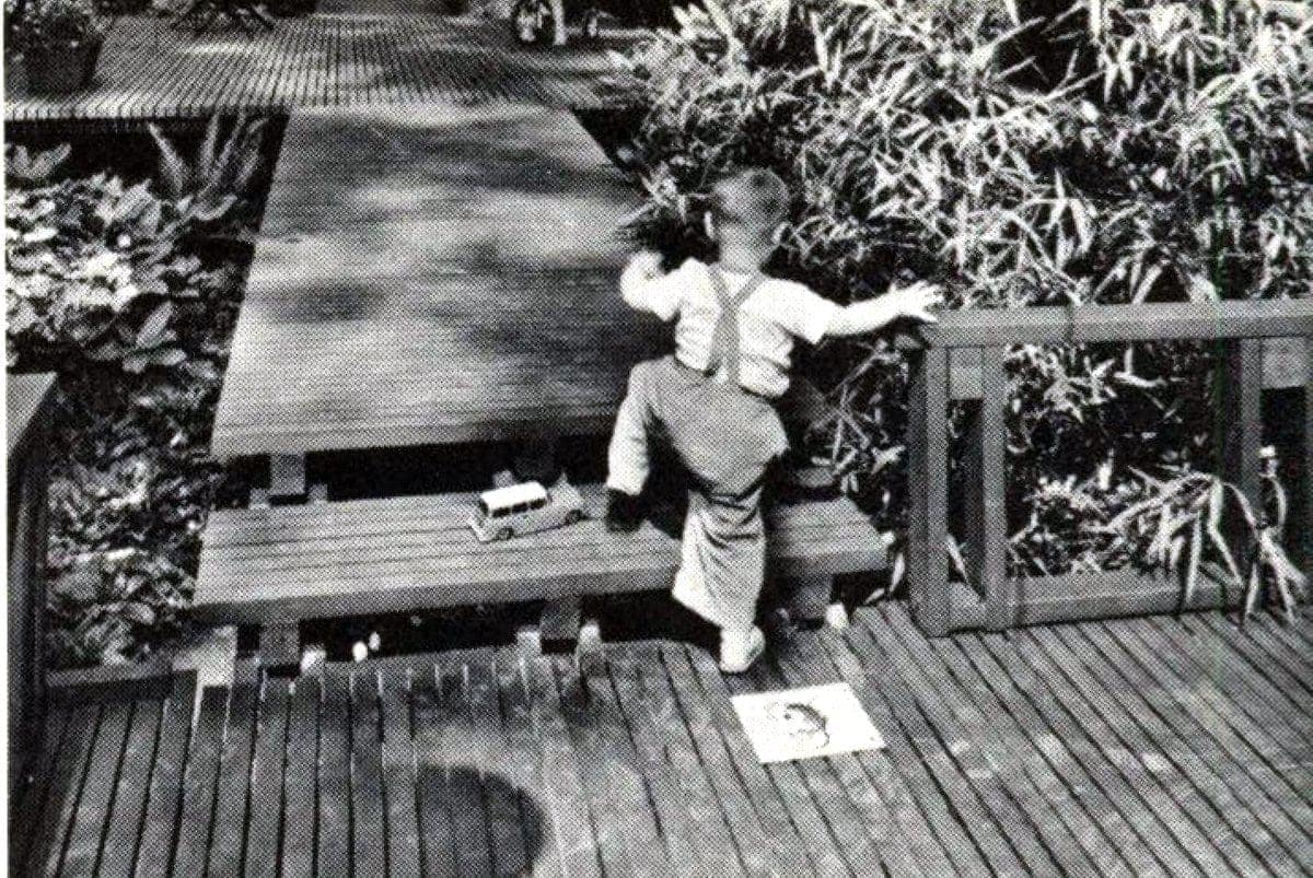 Decks and wood pathways from 1960